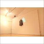 冨田哲司・川上りえ《sway》2011