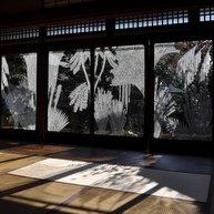 《靄の中へ》2010 © SASAKI Ai   photo by KATAGIRI Atsunobu