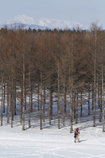 モエレ沼公園の冬